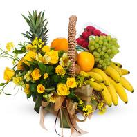 과일의 축체