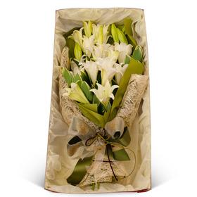 백합 꽃상자
